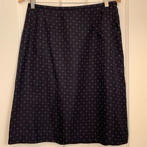 Silk Ann Taylor Skirt